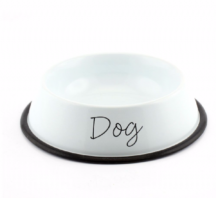 Modern White Metal Dog Bowl